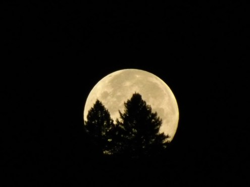 blue_moon_setting_sept_1_2012-10